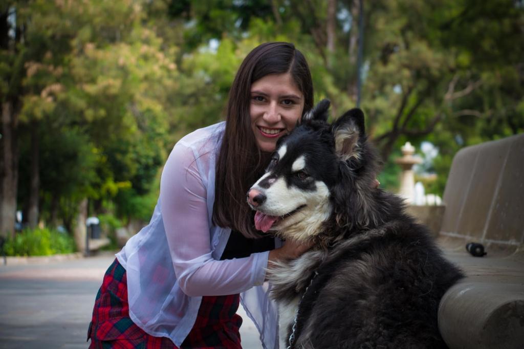 соотношение собачьих и человеческих лет