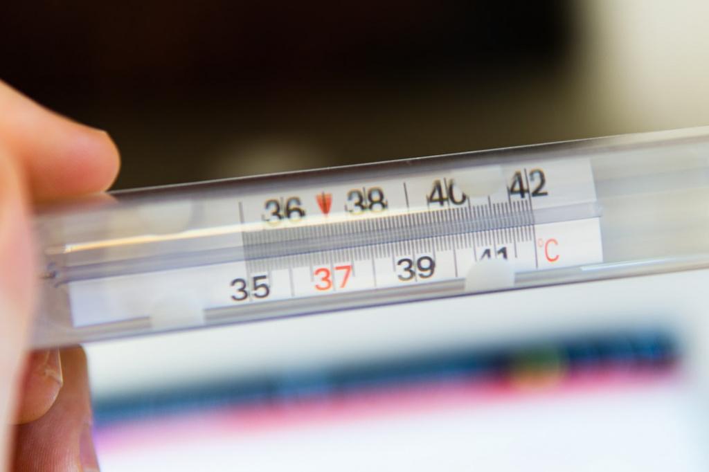 Причины повышения температуры у собак