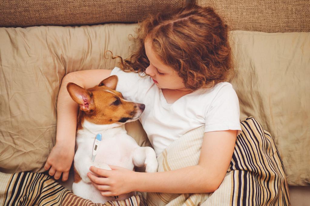 Как узнать, что у собаки температура