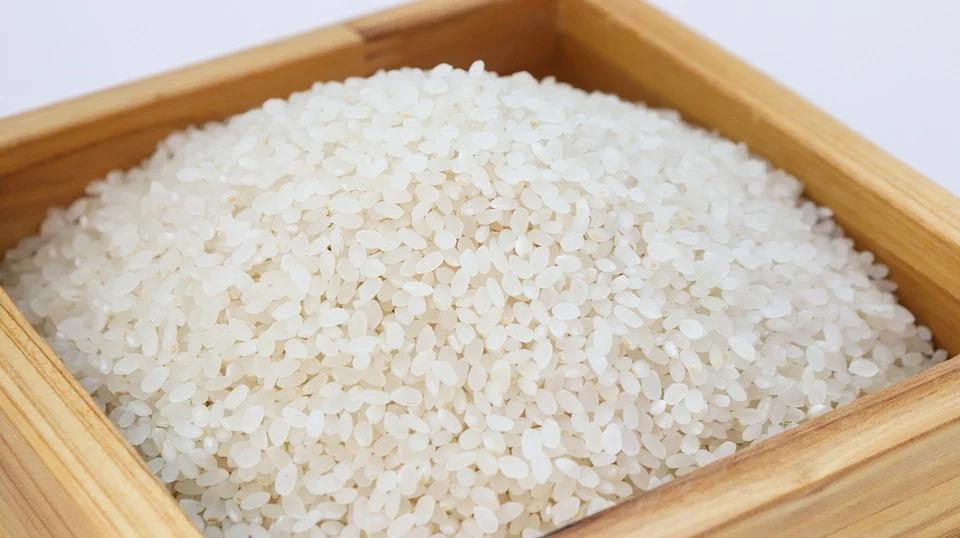 рисовая крупа для собак