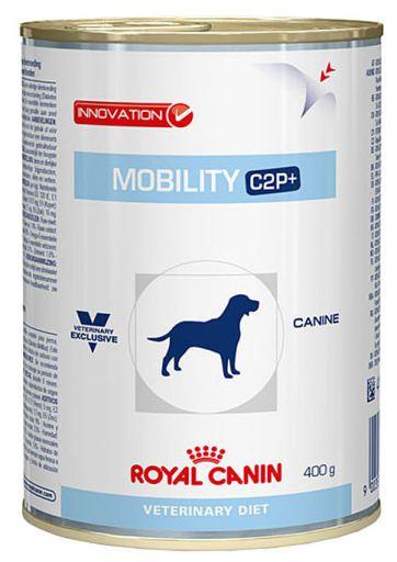 specialist canin articular
